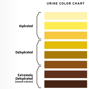 urine-hydration